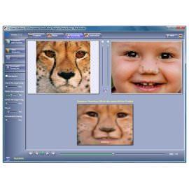 Графический редактор FotoMorph