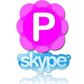 ��������� ��� ������ ������� Pamela for Skype Basic