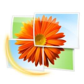 Просмотщик изображений Windows Live Photo Gallery
