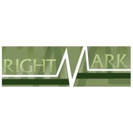 Диагностика процессора RightMark CPU Clock Utility