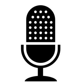Запись разговора в Skype - VoiceSpy
