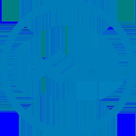 Управление мониторами Dell Display Manager