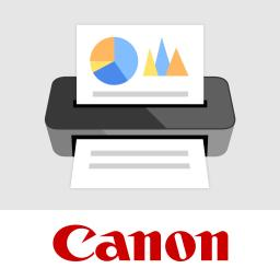 Сканирование и печать Canon MP Navigator EX