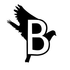 Создание шрифтов BirdFont